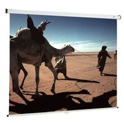 Wall projection screen manual Oray 180 x 180 cm