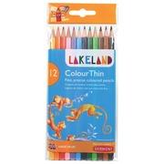 Lakeland crayon de couleur Colourthin, blister de 12 pièces en couleurs assorties