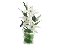 Bouquet Lys white + vase